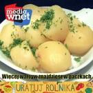 foto: rolnikwnet.pl