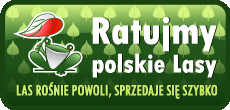 logo-230x110